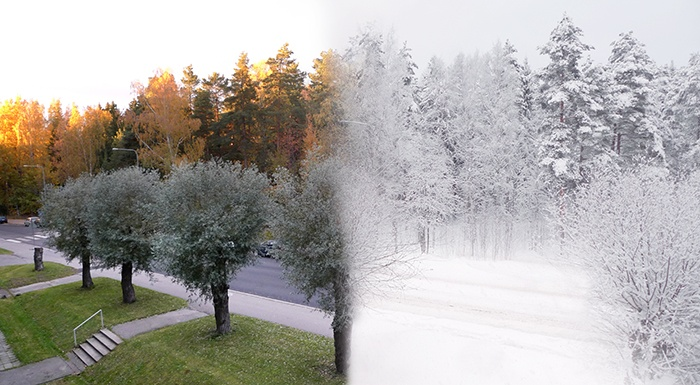 A photo which shows the contrast between the height of autumn and a month or so later after a substantial snowfall
