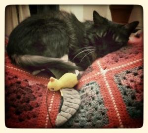 Day 29: Proekt 365 Che Fufu loves her birdie