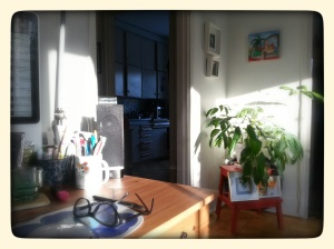 Day 30: Proekt 365 Lovely streaming sunshine to brighten my day
