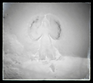 Day 33: Proekt 365 A friendly snow angel for a friend
